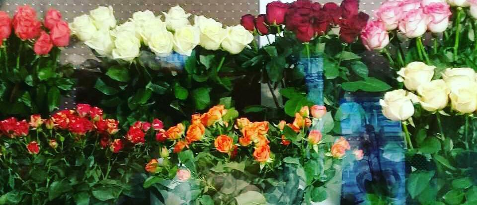 Зимой магазин цветы витебск время работы